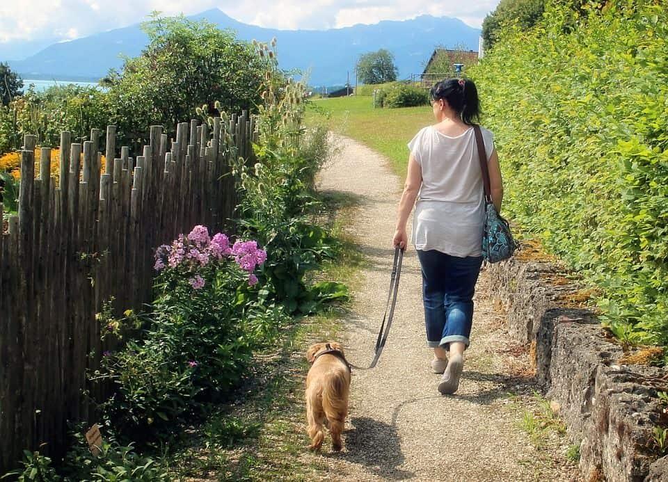 Frau geht mit Hund gassi